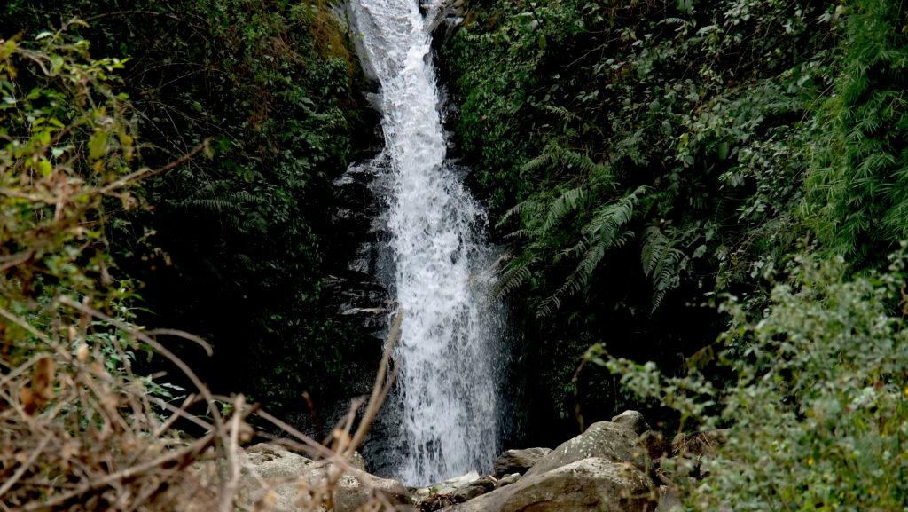 Field Recording nepal himalaya David kamp studiokamp forest river