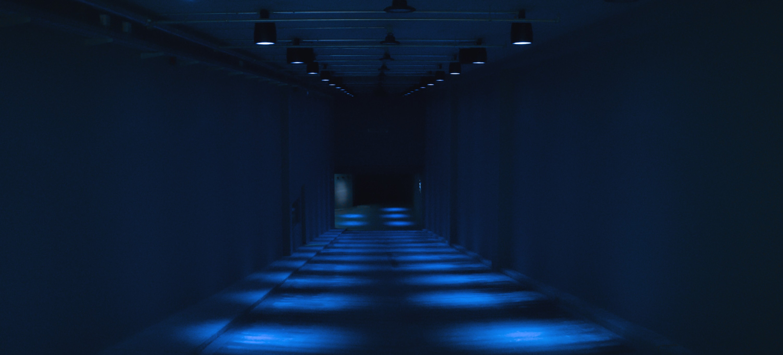 Pictoplasma studiokamp sound installation silent green channel soundscape creatures david kamp PMWO